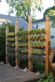 Totally Fascinating Wide And Open Vertical Herb Gardening Idea With Hanging Terracotta Planters Truly Hand Picked