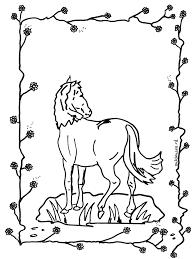 Paard 2 Kleurplaten Paarden