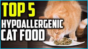 hypoallergenic cat food in 2019