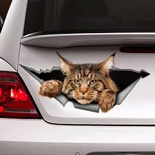 Maine Coon Car Sticker Torn Metal Decal Reflective Sticker 3d Funny Big Cat Decal Car Styling Waterproof Wish