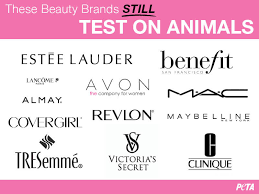 makeup brands that do not test on