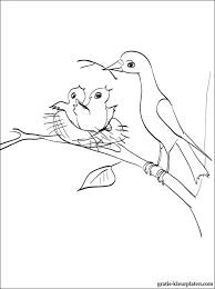 Vogels Maken Hun Nesten Kleurplaten Gratis Kleurplaten