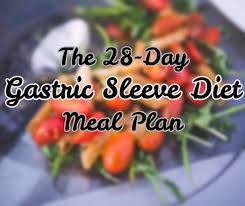 gastric sleeve post op t 28 day meal