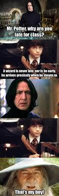funniest harry potter quotes quotesgram