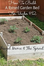 how to build a raised bed garden for