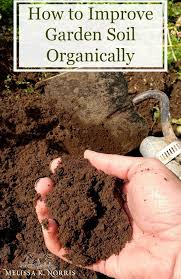 how to improve soil for gardening