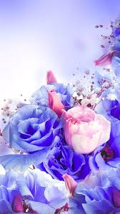 flowers live wallpaper android apps