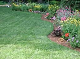 fertilizing flower garden plants