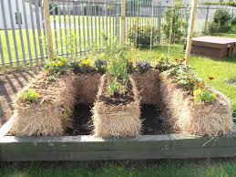 the planters post vegetable gardening