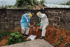 Неуловимый враг: где прячется вирус Эбола между вспышками эпидемий? —  National Geographic Россия: красота мира в каждом кадре