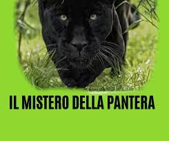 IL MISTERO DELLA PANTERA SANSEVERESE – La Gazzetta di San Severo ...