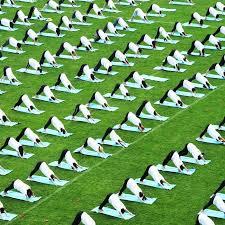 12 best yoga mats 2020 the strategist