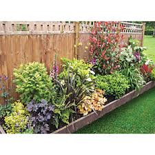 Garden On A Roll Mixed Shady Border W600mm X 3m To 10m Wickes Co Uk