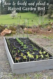 low maintenance raised garden bed