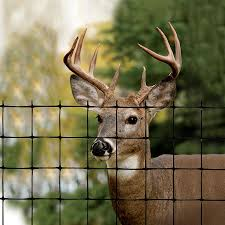 Tenax Deer Fence Select 330 Ft X 8 Ft Black Hdpe No Dig Containment Extruded Mesh Rolled Fencing In The Rolled Fencing Department At Lowes Com