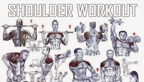 shoulder workout for beginners
