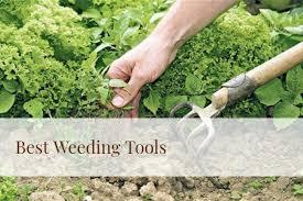 best weeding tools 2020 reviews