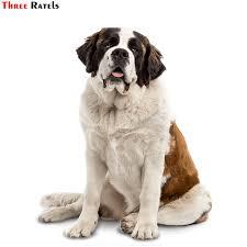 Three Ratels Trl537 12x14 5cm Saint Bernard Dog Car Funny Stickers And Decals Car Stickers Aliexpress