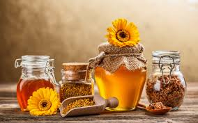 flowers drink honey herb flower