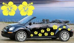 Pin On Hawaiian Car