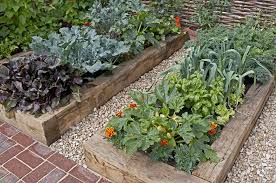 24 raised bed gardening examples for