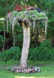 tree stumps for garden art and yard