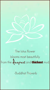 the lotus flower blooms most beautifully from the deepest and