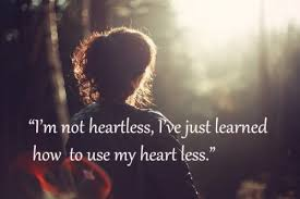 i don t care quotes world by quotes