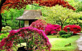 64 beautiful garden wallpapers on
