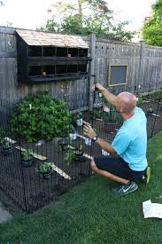 Our New Garden And Tips To Keep Animals Out Nesting With Grace