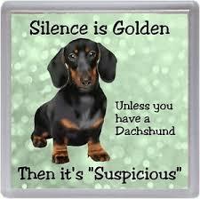 dachshund dog coaster silence is