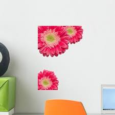 Pink Gerber Daisies With Wall Decal Wallmonkeys Com