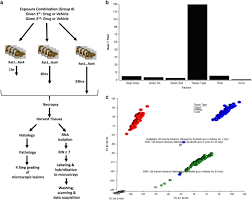 Transcriptomic profiles of tissues from rats treated with ...