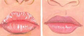 home remes for dry chapped lips