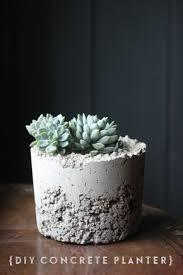 diy cement planters diy concrete