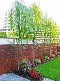 71 Fantastic Backyard Ideas On A Budget Worthminer Privacy Fence Landscaping Small Backyard Landscaping Small Backyard Design