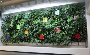 living walls livewall green wall