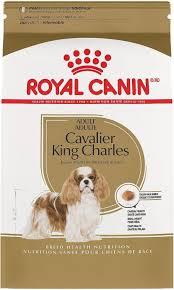 royal canin dog food review recalls