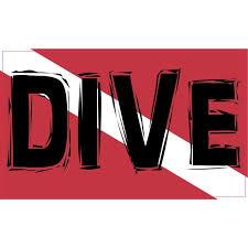 5in X 3in Dive Diver Down Sticker Flag Bumper Stickers Vinyl Decal Walmart Com Walmart Com