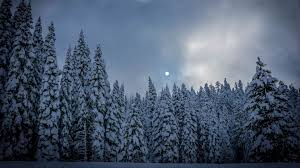 1080p snow wallpapers top free 1080p