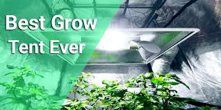 Best Grow Tent For The Money 2020 - [Reviews & Buyers Guide]