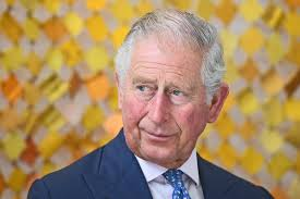 Prince Charles: the conventions that will stop him from meddling as King