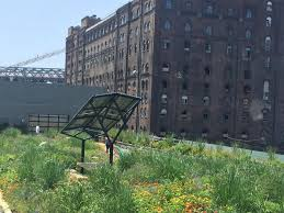 this brooklyn rooftop garden is a fully