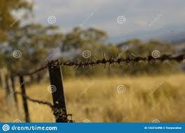 Stretch Of Rusty Barbed Wire Fence Stock Photo Image Of Outdoors Country 132212498