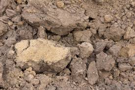 what is clay loam with picture