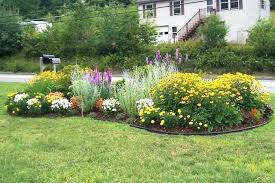 flower edging ideas front yard simple
