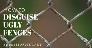 How To Disguise Ugly Fences Including Chainlink Empress Of Dirt