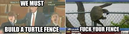 We Must Build A Turtle Fence Fuck Your Fence Turtle Fence Quickmeme