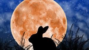 Mặt Trăng: 7 bí ẩn và 1 giả thuyết khó tin - Trí Thức VN