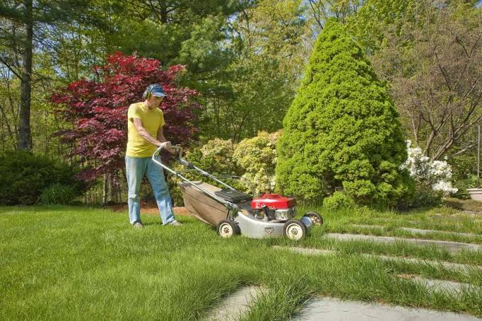 Image result for Professional Lawn Care Services""